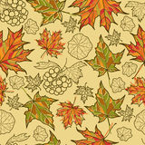 Seamless autumn leaves background. Royalty Free Stock Photos