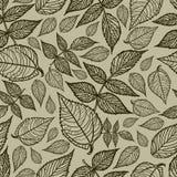 Seamless  autumn leaves background Royalty Free Stock Photos