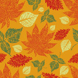 Seamless autumn leaves background. Thanksgiving Stock Images
