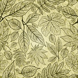 Seamless autumn leaves background. Thanksgiving Royalty Free Stock Images