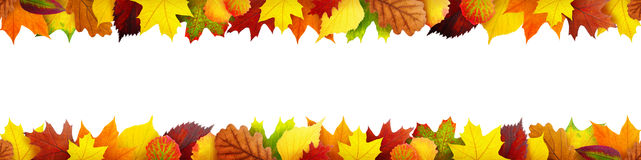 Seamless autumn leaves banner Stock Photos
