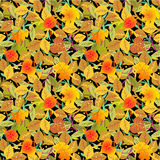 Seamless autumn leaves on black pattern Stock Photography