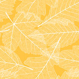 Seamless autumn leaves pattern stock illustration