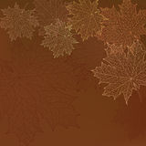 Seamless autumn leaves pattern. Autumn abstract vector background. Orange leaves Royalty Free Stock Photo