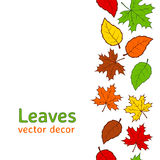 Seamless autumn leaves pattern Stock Photography