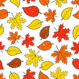 Seamless autumn leaves pattern Stock Image