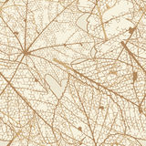Seamless autumn leaves pattern. plus EPS10 Royalty Free Stock Photography
