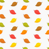Seamless autumn leaves texture Royalty Free Stock Images