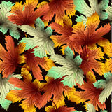 Seamless autumn pattern on black background. With colorful leaves Vector Illustration