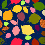 Seamless autumn pattern on blue background. With colorful leaves Royalty Free Illustration