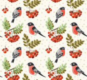 Seamless autumn pattern with bullfinch and rowan b Royalty Free Stock Images