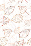 Seamless autumn pattern with colored leaves contours Royalty Free Stock Image