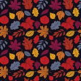 Seamless autumn pattern. With colorful leaves from different trees on dark background for your creativity. Hand drawn vector illustration Stock Photos