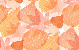 Seamless autumn pattern Stock Photo
