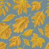 Seamless autumn pattern. With golden maple leaves on blue background for your creativity. Hand drawn vector illustration Royalty Free Stock Photo