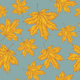 Seamless autumn pattern. With golden msplr leaves on blue background for your creativity. Hand drawn vector illustration Royalty Free Stock Photography