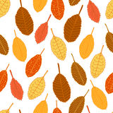 Seamless autumn pattern. The leaves fall. Hand drawn. Stock Photos