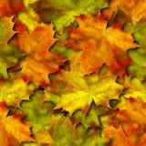 Seamless autumn pattern. Vector. Seamless autumn pattern with maple leaves. Vector illustration stock illustration