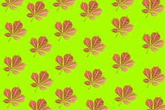 Seamless autumn pattern, red leaf on bright green background, vector. Seamless autumn pattern for Wallpaper and design, red sheet on bright green background Royalty Free Stock Photo