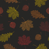 Seamless autumn pattern from skeletons of leaves. Stock Photos
