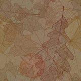 Seamless autumn pattern. Stock Photography