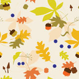 Seamless autumn pattern Stock Image