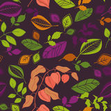 Seamless autumn pattern Stock Photos