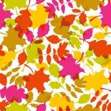 Seamless autumn pattern Royalty Free Stock Photo