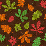 Seamless autumn pattern Royalty Free Stock Image