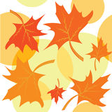 Seamless autumnal background with maple leaves Stock Image