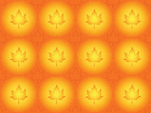 Seamless autumnal background. With maple leaves Royalty Free Stock Image