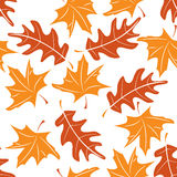 Seamless autumnal pattern Stock Photography