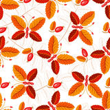 Seamless autumnal pattern with butterflies Stock Image