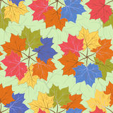 Seamless autumnal pattern. With wreaths of maple leaves Stock Photos