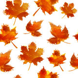 Seamless autumnal texture. Wallpapers with maple leaves. Backdrop with red autumn leaves with the decor of a watercolor Stock Photography