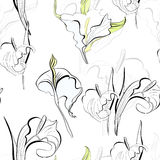 Seamless background. With calla lilies flowers Stock Photos