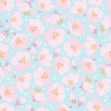 Seamless background with apple blossom Stock Photo
