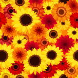 Seamless background with autumn colorful flowers. Stock Photography