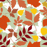 Seamless background of autumn leaves Royalty Free Stock Image