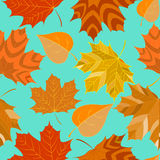 Seamless background with autumn leaves decorative Royalty Free Stock Photos
