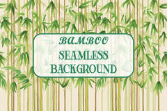 Seamless Background, Bamboo Plants Stock Images