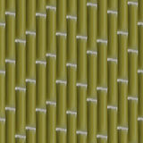 Seamless background of bamboo stalks, vector illustration. Stock Photography
