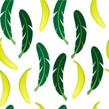 Seamless background with banana and banana palm leaves on white background. vector illustration