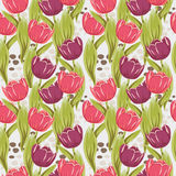 Seamless background with beautiful colored tulips Stock Images