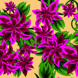 Seamless background with beautiful purple flowers Stock Image