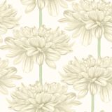 Seamless background with beige dahlia. Hand-drawn with effect of drawing in watercolor Royalty Free Stock Photos