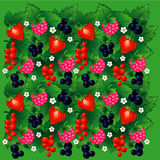 Seamless background with berries. Raspberry, currant, strawberry, blueberry Stock Photo