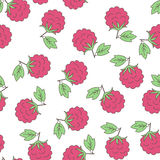 Seamless background with berries raspberry Stock Images