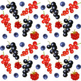 Seamless background with berries Stock Image
