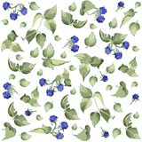Seamless background from a berry ornament, fashion. Able modern wallpaper or textile. Illustration blackberry royalty free illustration